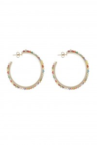 Salina Multi Colour Hoop Earings
